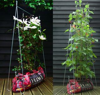 Tomato growing frame other uses